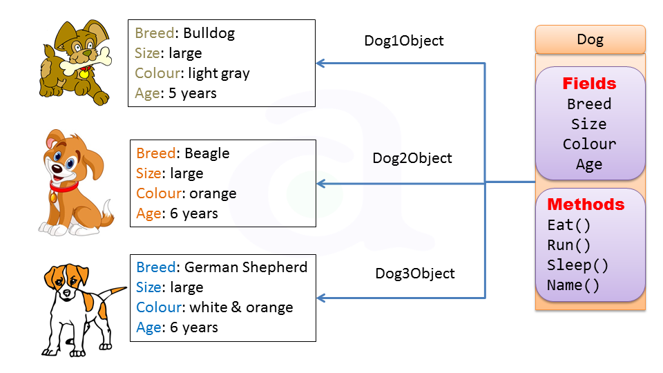 class-and-object-in-java-6.PNG?version=1